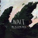 cd_wait.png
