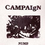 campaign.jpg