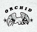 t_orchid.jpg